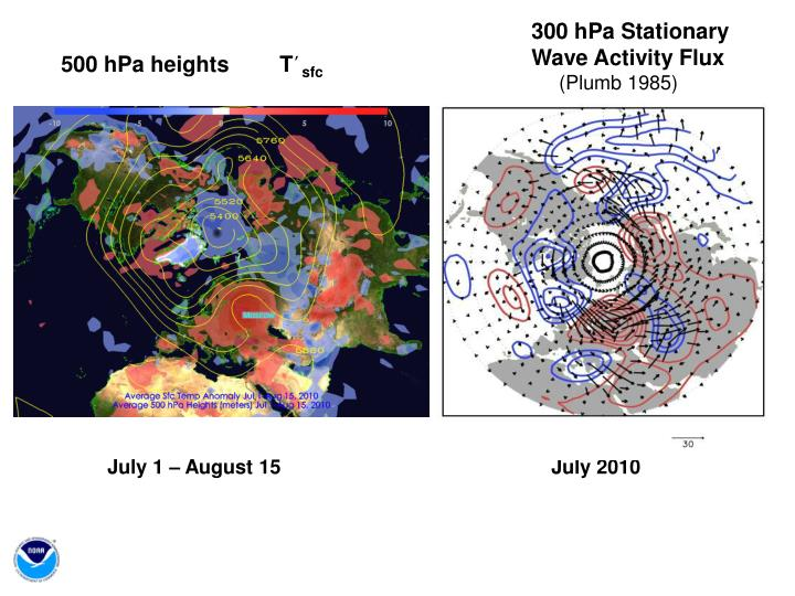 300 hPa Stationary Wave Activity Flux