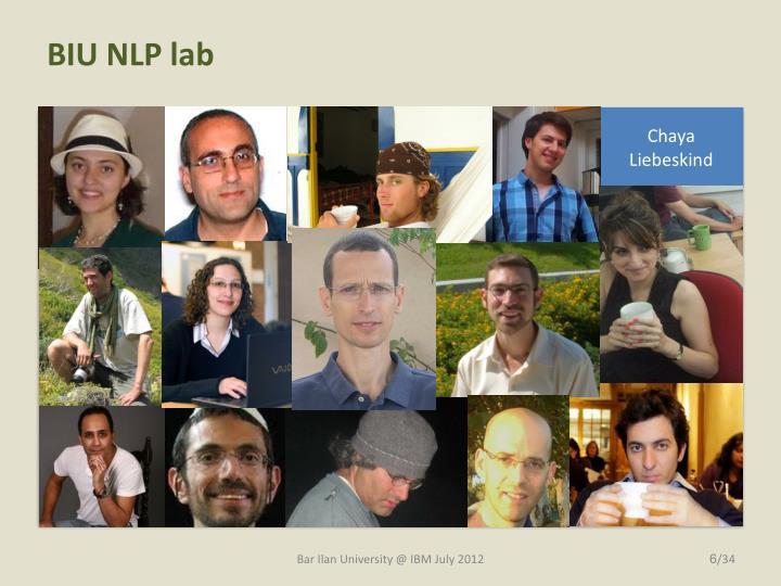 BIU NLP lab