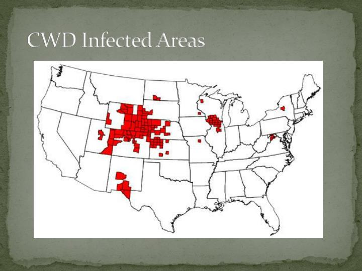 CWD Infected Areas