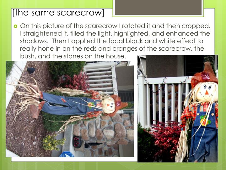 [the same scarecrow]