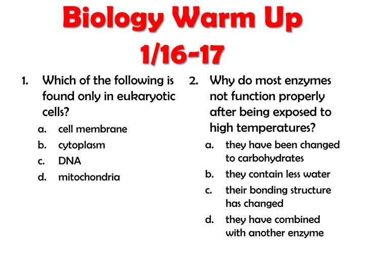 Biology Warm Up