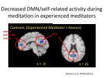 decreased dmn self related activity during meditation in experienced meditators