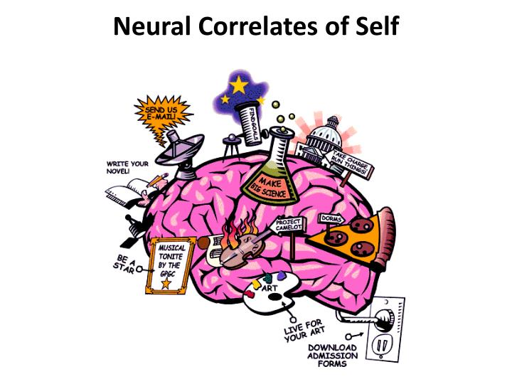 Neural Correlates of