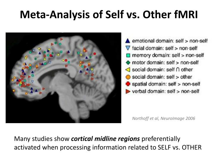 Meta-Analysis of Self vs. Other fMRI