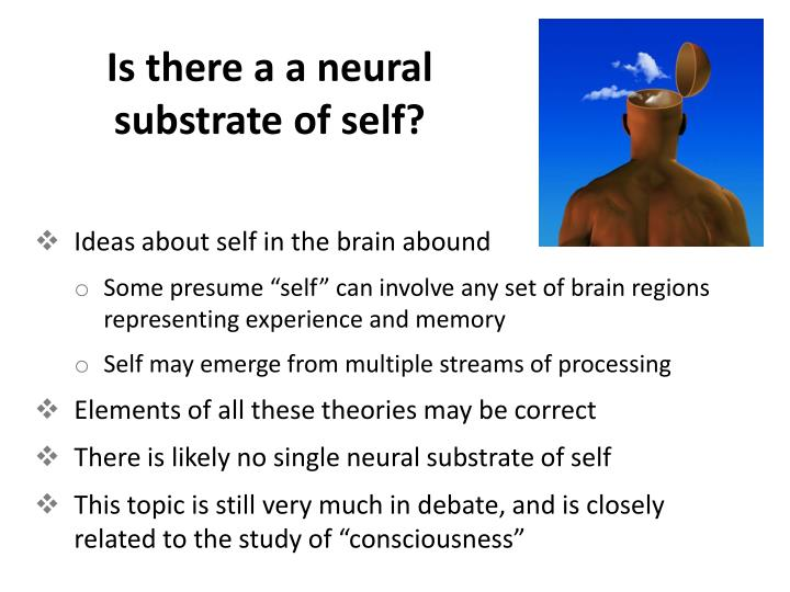Is there a a neural substrate of self?