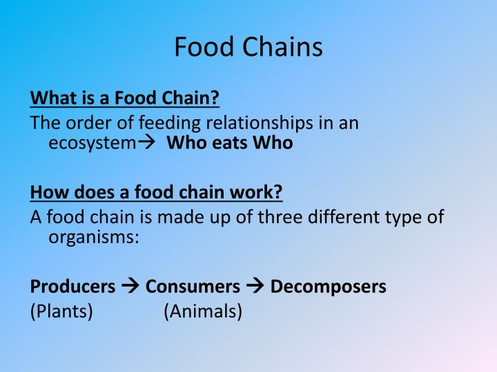 Food chains1