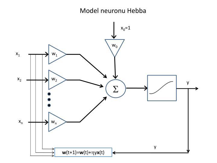 Model neuronu