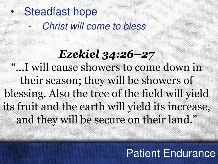 Steadfast hope