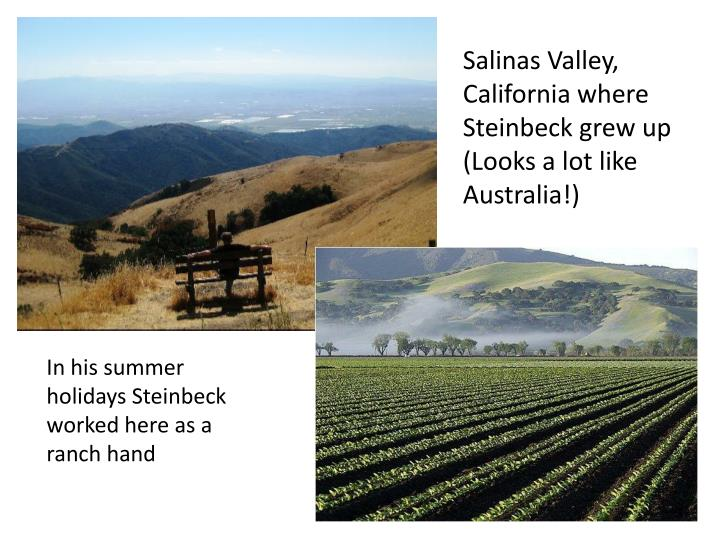 Salinas Valley, California where Steinbeck grew up
