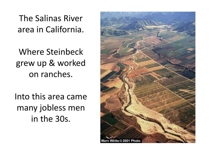 The Salinas River area in California.