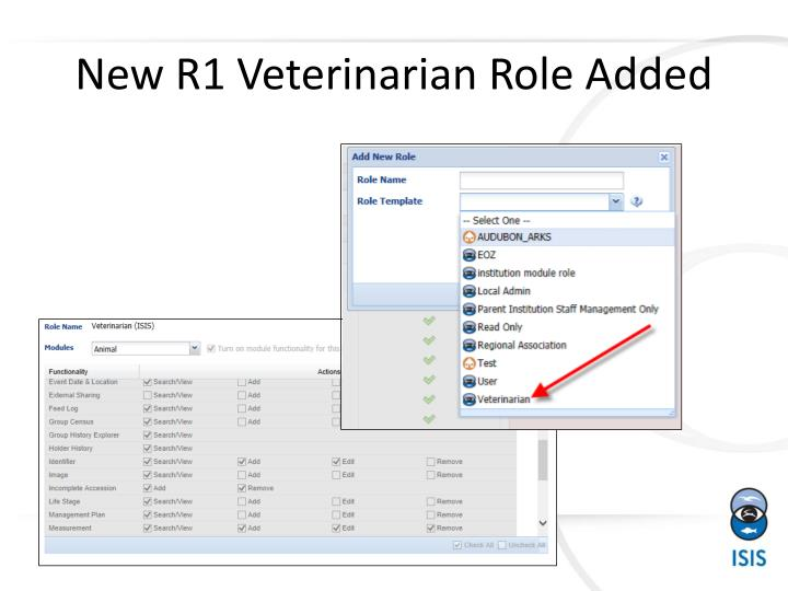 New R1 Veterinarian Role Added