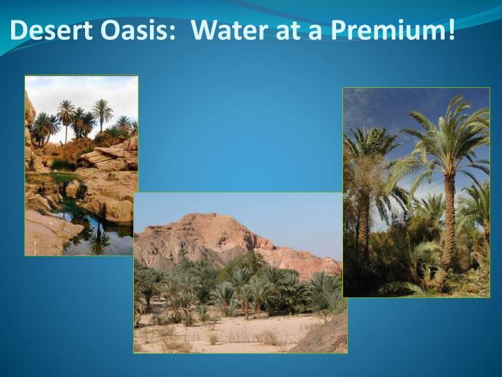 Desert Oasis:  Water at a Premium!