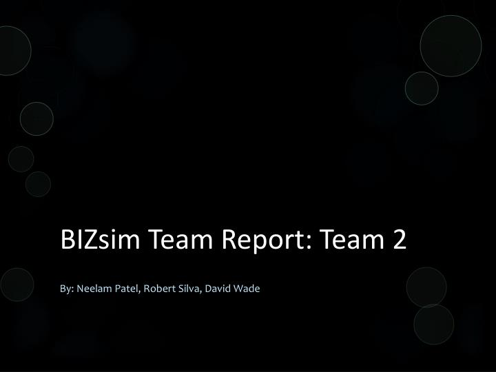 Bizsim team report team 2