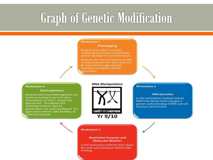 Graph of Genetic Modification