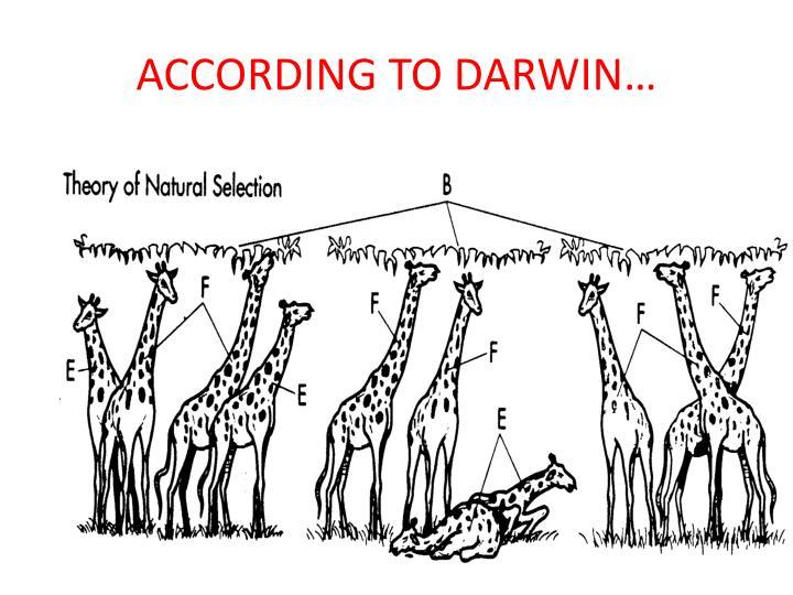ACCORDING TO DARWIN…