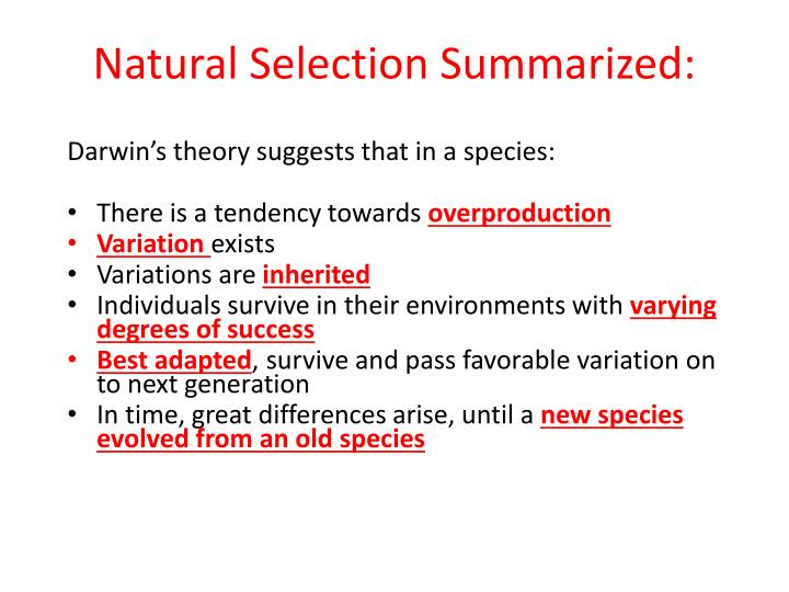 Natural Selection Summarized: