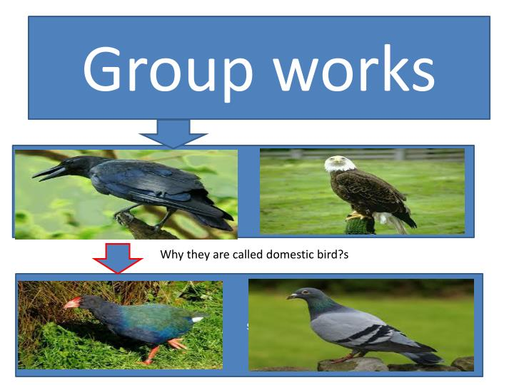 Group works
