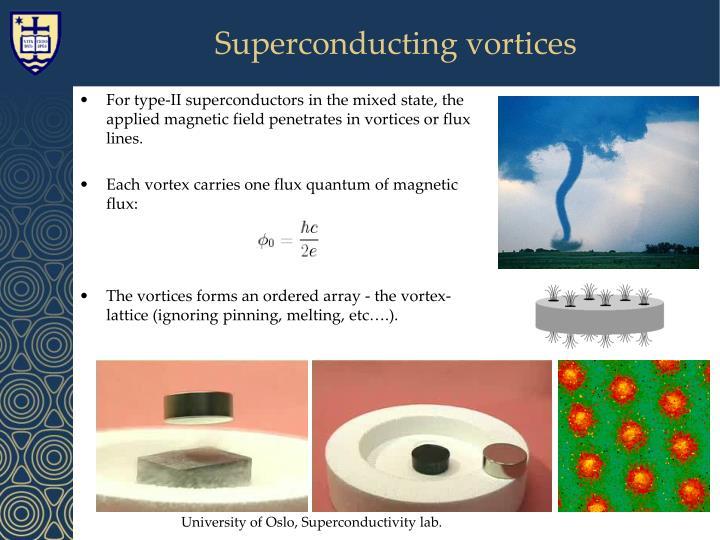 Superconducting vortices