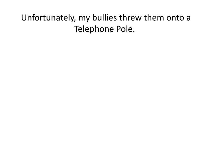 Unfortunately, my bullies threw them onto a Telephone Pole.