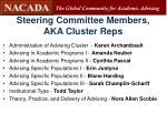 steering committee members aka cluster reps