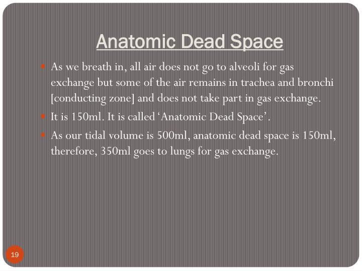 Anatomic Dead Space