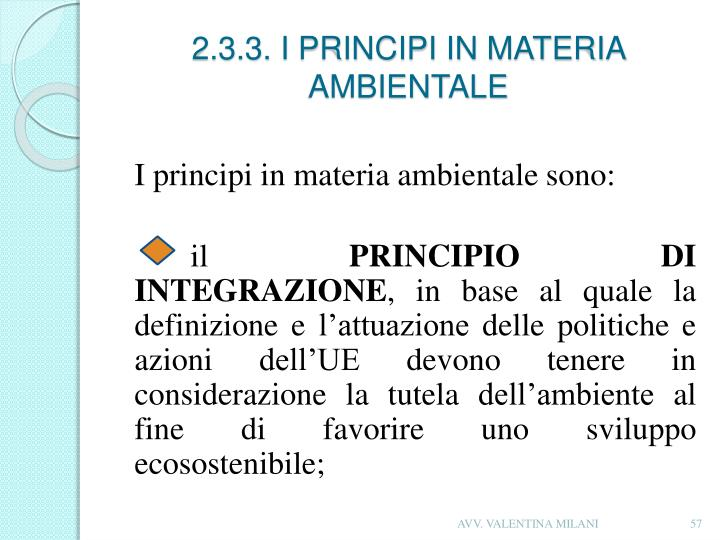 2.3.3. I PRINCIPI IN MATERIA AMBIENTALE
