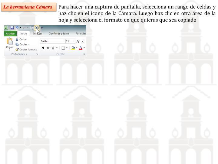 Para hacer una captura de pantalla, selecciona un rango de celdas y haz clic en el icono de la Cámara. Luego haz clic en otra área de la hoja y selecciona el formato en que quieras que sea copiado
