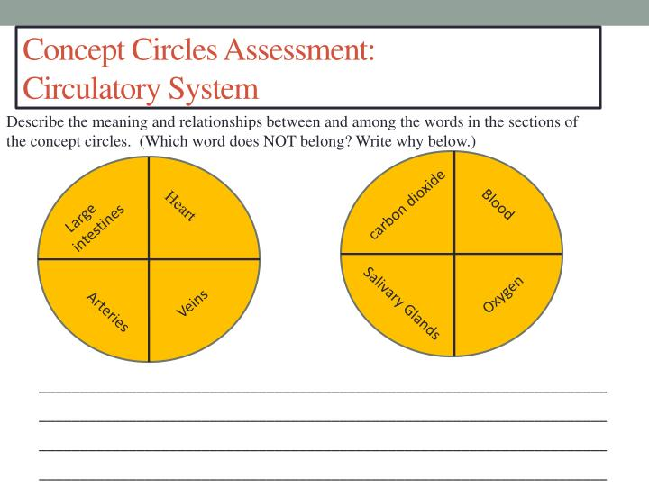 Concept Circles Assessment: