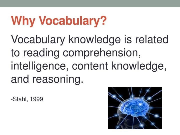 Why Vocabulary?