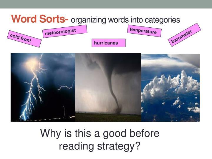 Word Sorts-
