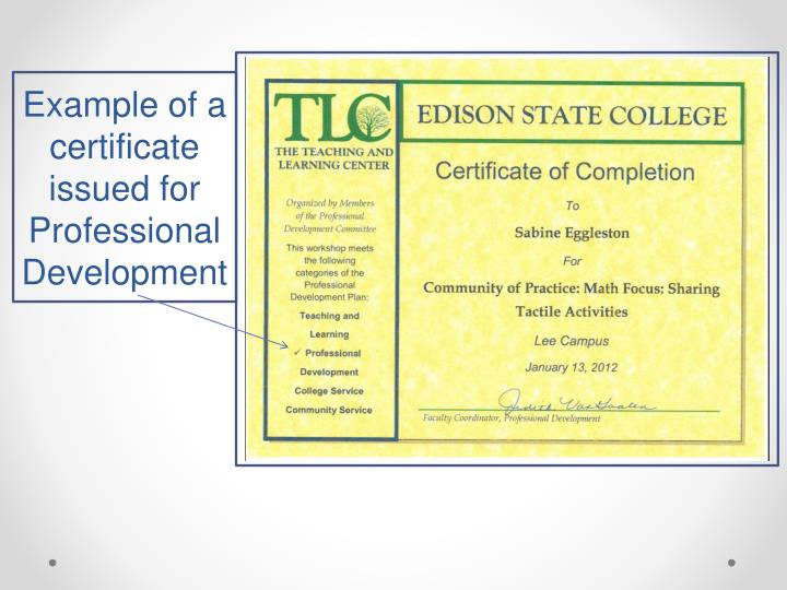 Example of a certificate issued for Professional Development