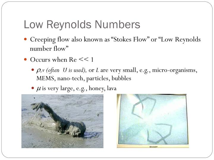 Low Reynolds Numbers