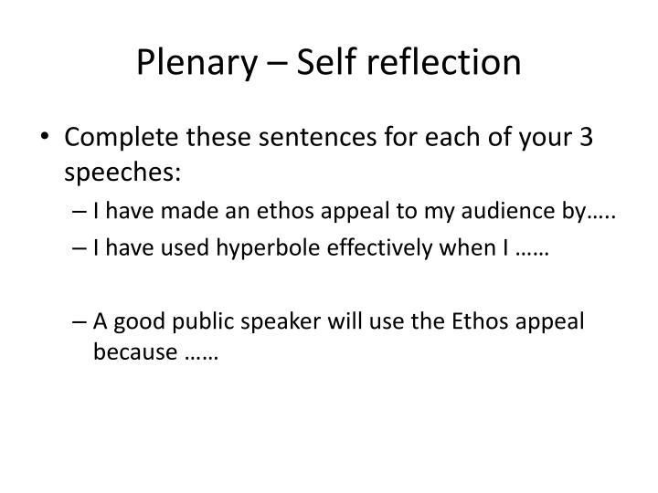 Plenary – Self reflection
