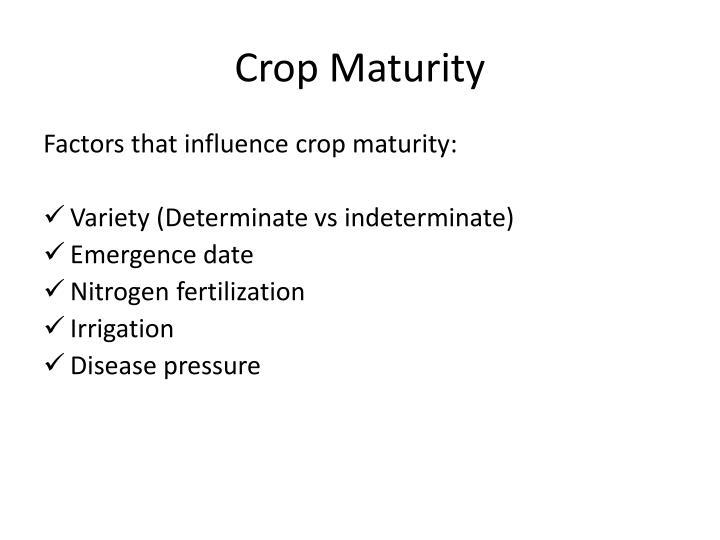 Crop Maturity