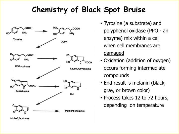 Chemistry of Black Spot Bruise