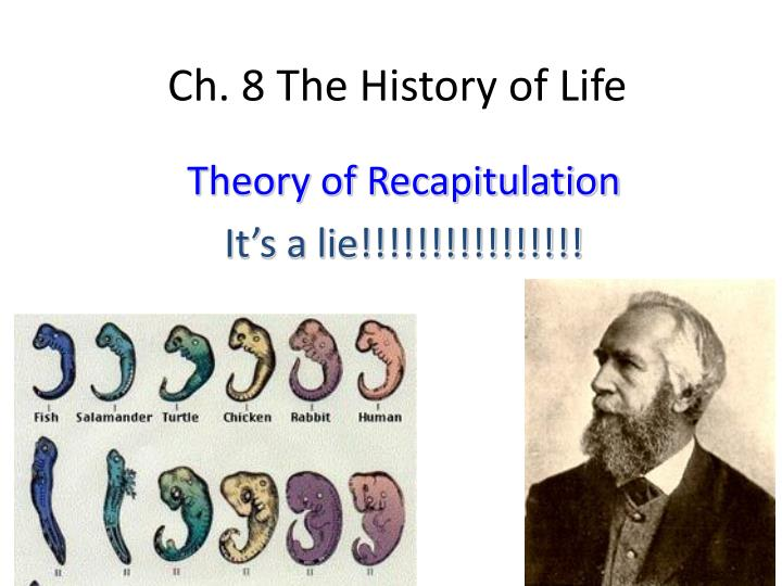 Theory of Recapitulation