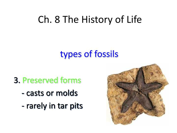 Ch. 8 The History of Life