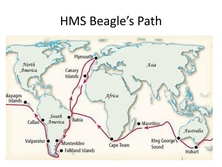 HMS Beagle's Path