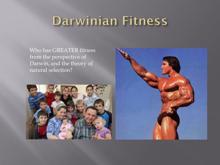 Darwinian Fitness