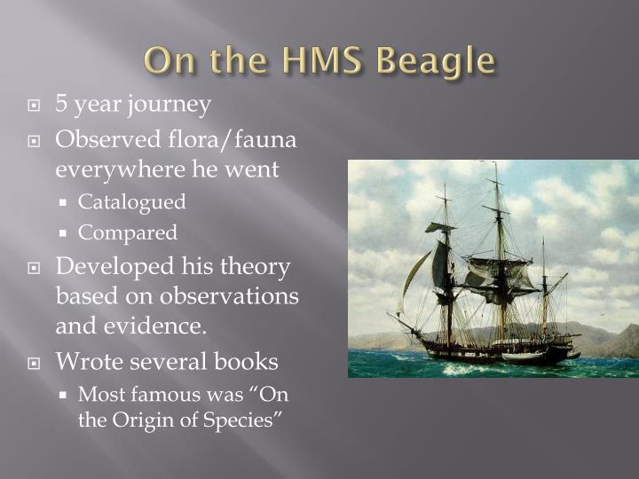 On the HMS Beagle