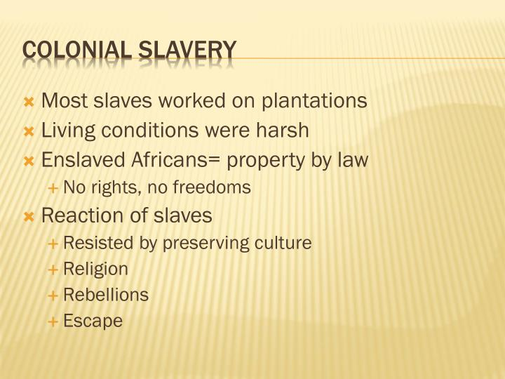 Most slaves worked on plantations
