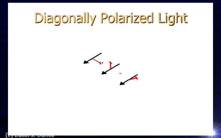 Diagonally Polarized Light