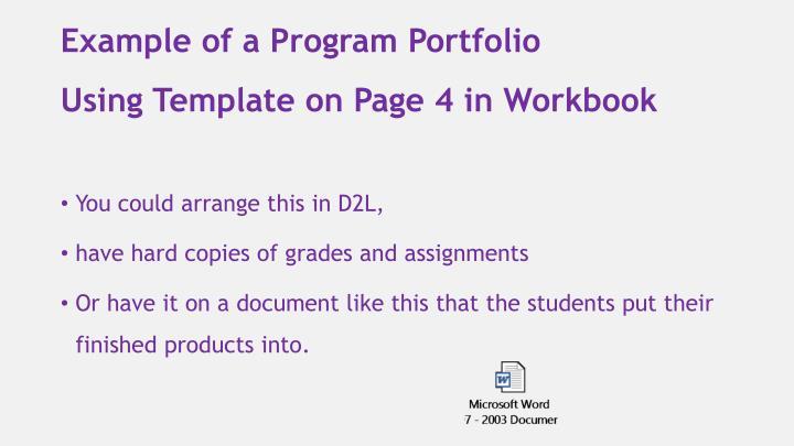 Example of a Program Portfolio