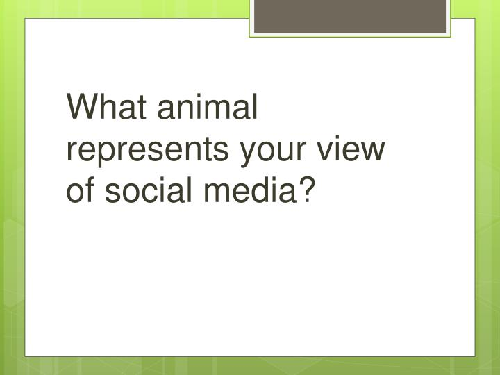 What animal represents your view of social media?