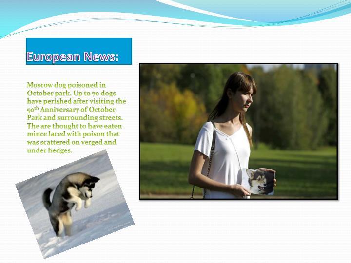 European News: