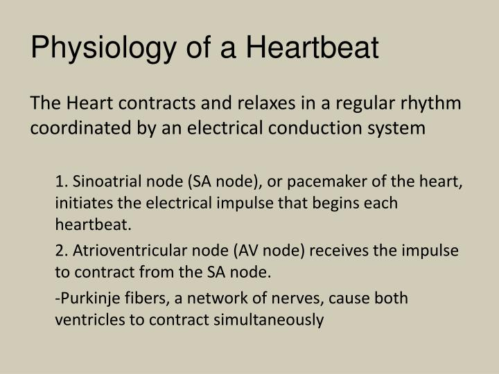 Physiology of a Heartbeat