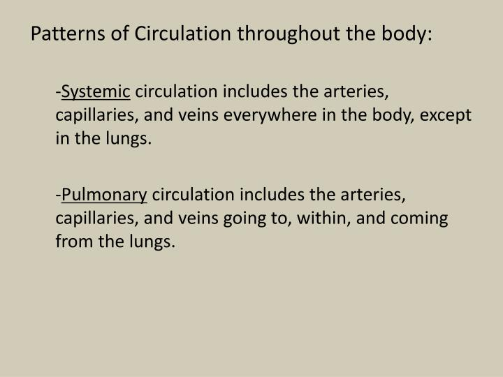 Patterns of Circulation throughout the body: