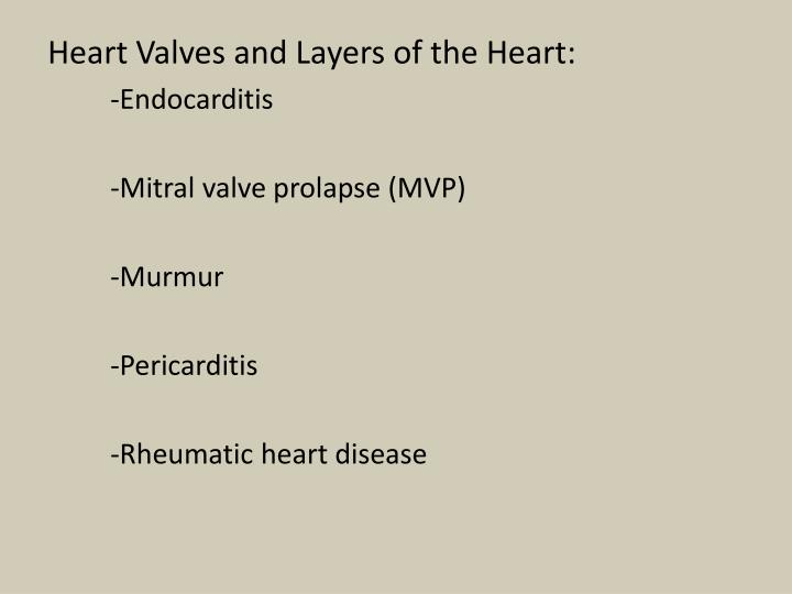 Heart Valves and Layers of the Heart: