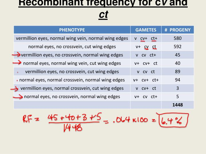 Recombinant frequency for