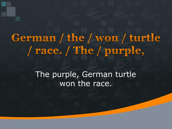 German / the / won / turtle / race. / The / purple,
